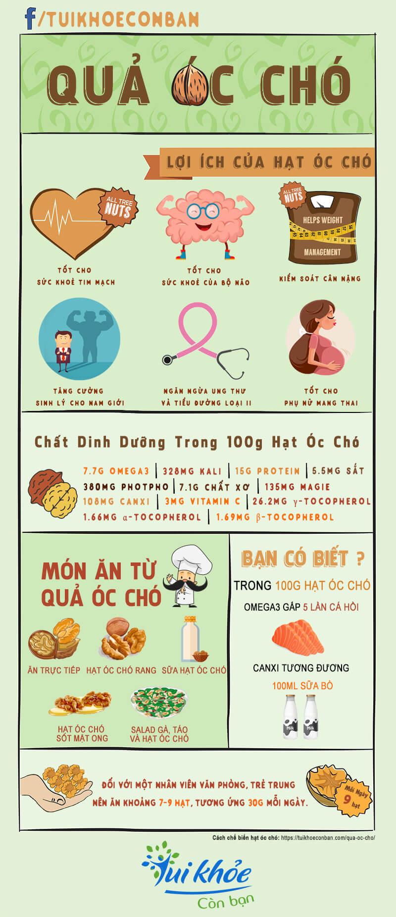 qua-oc-cho-infographic