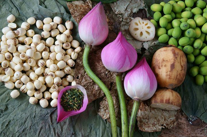 món ngon từ hạt sen