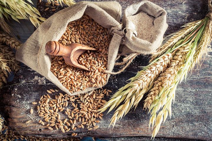 whole grain la gi