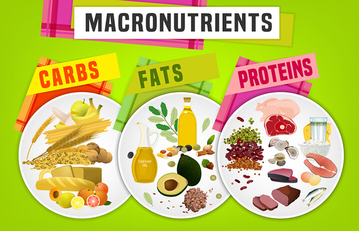Knowledge About Macronutrients You Should Know - Ultimate Sup