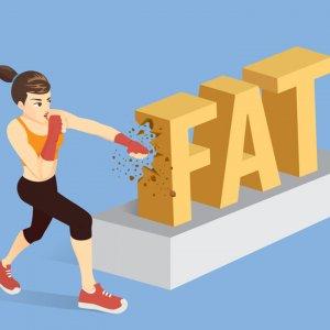 chat beo va cholesterol