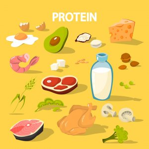 co the thieu protein