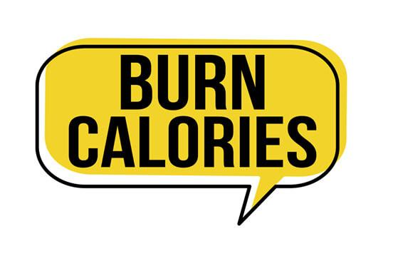 dot calories