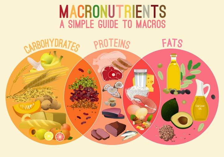 macronutrients la gi